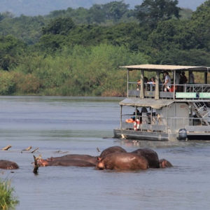 Spice-of-Uganda-Safari